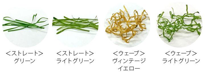4種類の葉をミックス