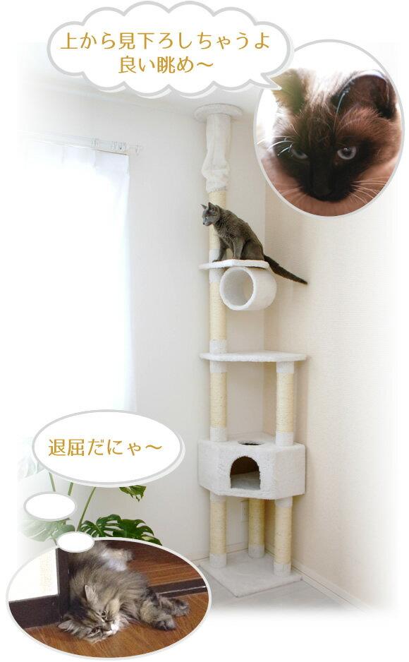 キャットタワーは猫の遊び場、休息場所、運動場、パラダイスです。  猫は高いところが大好きです。